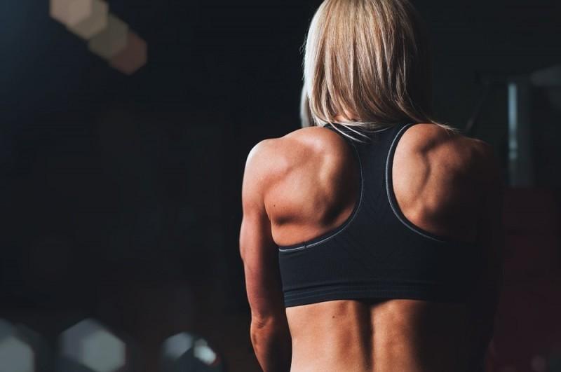 treino-musculacao-academia.jpg